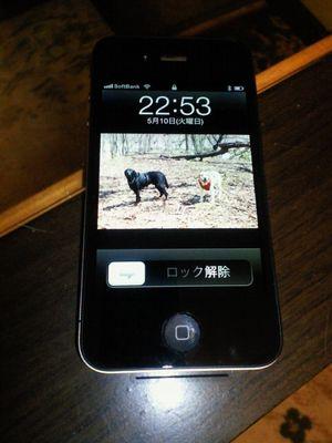 110509_blogiphone.jpg