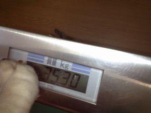 123026体重