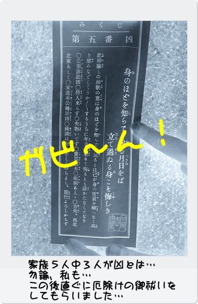 DVC00025_20120114003314.jpg