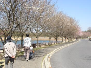 2011_0406b.jpg