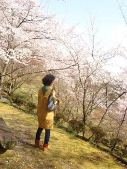 2011_0409j.jpg