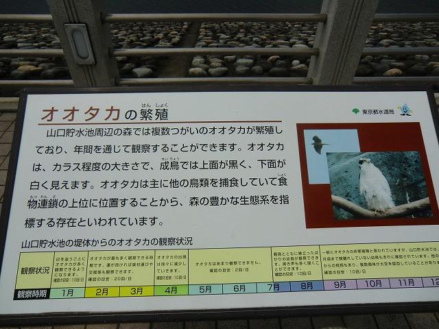 2011_0722_123250-CIMG0994.jpg
