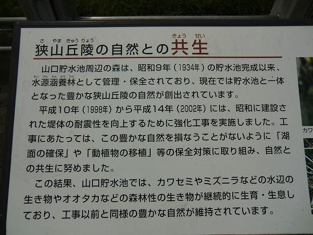 2011_0722_124446-CIMG1007.jpg