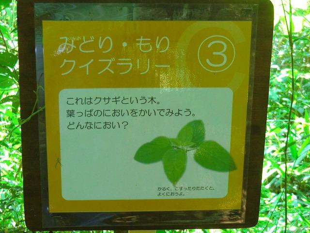 2011_0722_142955-CIMG1088.jpg