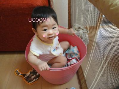 DSC04465_convert_20110804123700.jpg
