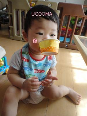 DSC04582_convert_20110813110309.jpg