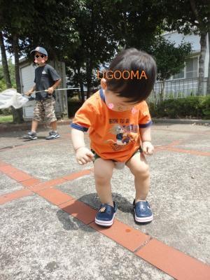DSC04605_convert_20110813172852.jpg