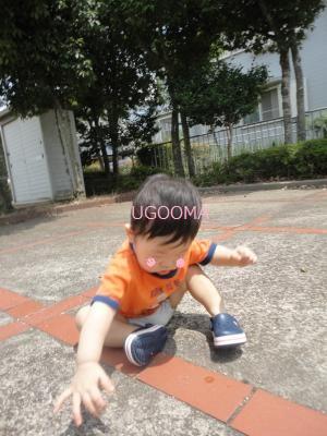 DSC04606_convert_20110813172914.jpg