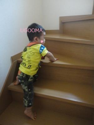DSC05045_convert_20110905163300.jpg