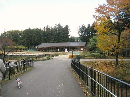 2011おでかけ563
