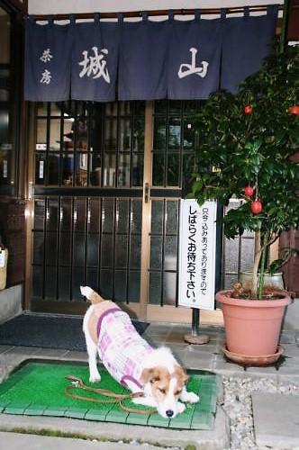 2011おでかけ579