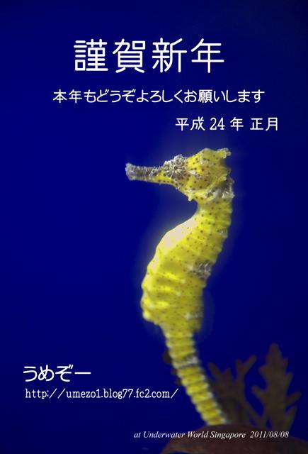 2012_Nenga-web.jpg
