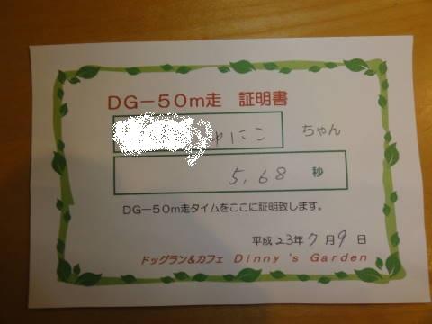 DSC06952.jpg