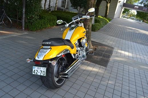 suzu6 (1)