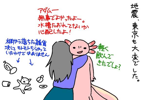 20110312jisin_fc2.jpg