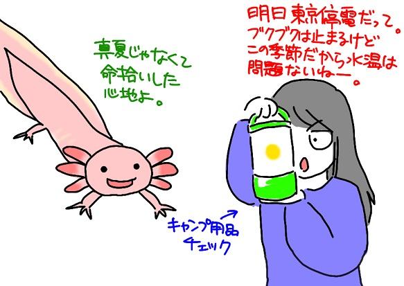 20110313teiden_fc2.jpg