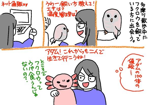 20110321owl_fc2.jpg