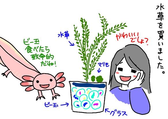 20110411mizukusa_fc2.jpg
