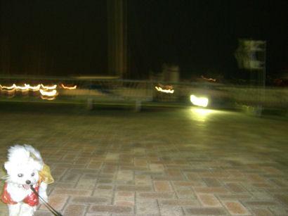 10-0649.jpg