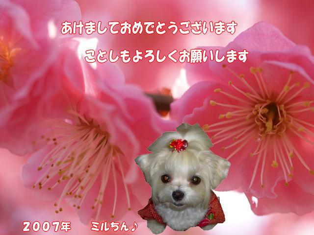 20070103165806.jpg