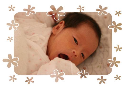 20080206_006.jpg