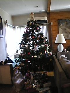 クリスマスツリーの下