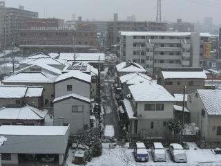 大雪なの?