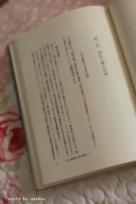 IMG_3836-.jpg