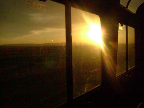 Sunset Limited/Amtrak