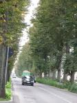 パヴィア修道院バス停までの道