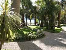 マードレ島