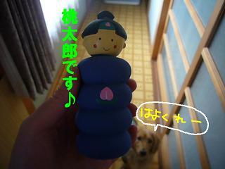 桃太郎さん