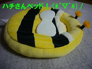 ハチさんベッド(横)
