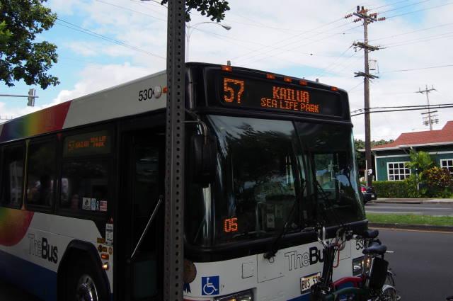 P9210773 (1)