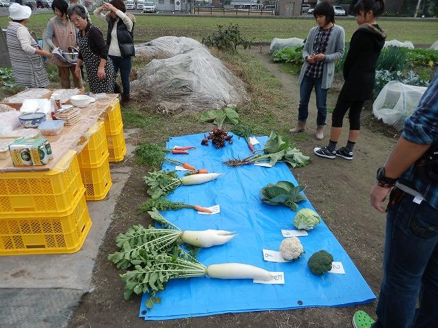 2011.11.13収穫祭 002