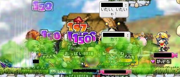 Maple0001q.jpg