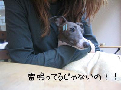 0515_01.jpg