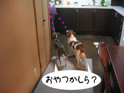 0521_07.jpg