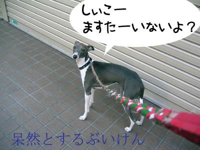 0524_03.jpg