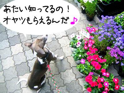 0524_08.jpg