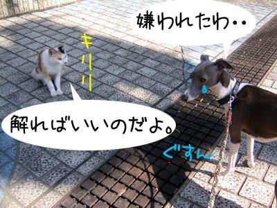 0601_05.jpg