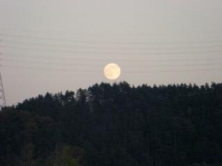 ♪今日は満月