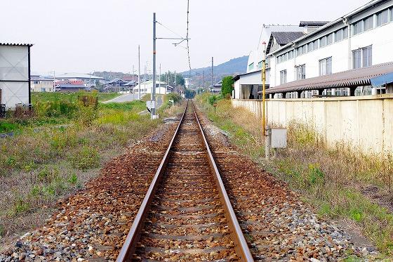 IMGP2946.jpg