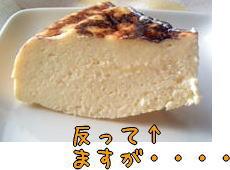 チーズケーキ1ピース