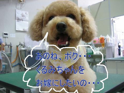 20070626101511.jpg