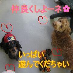 くーちぃ4
