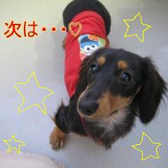 くーちぃ6