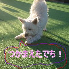 IMG_8185.jpg