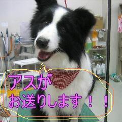 IMG_9550.jpg
