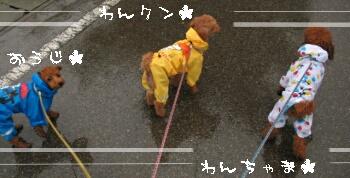 RAIN-3W.jpg